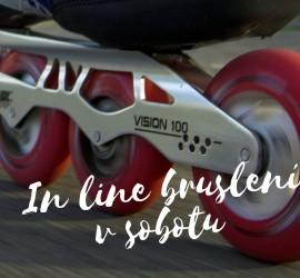 kurz in line (1)
